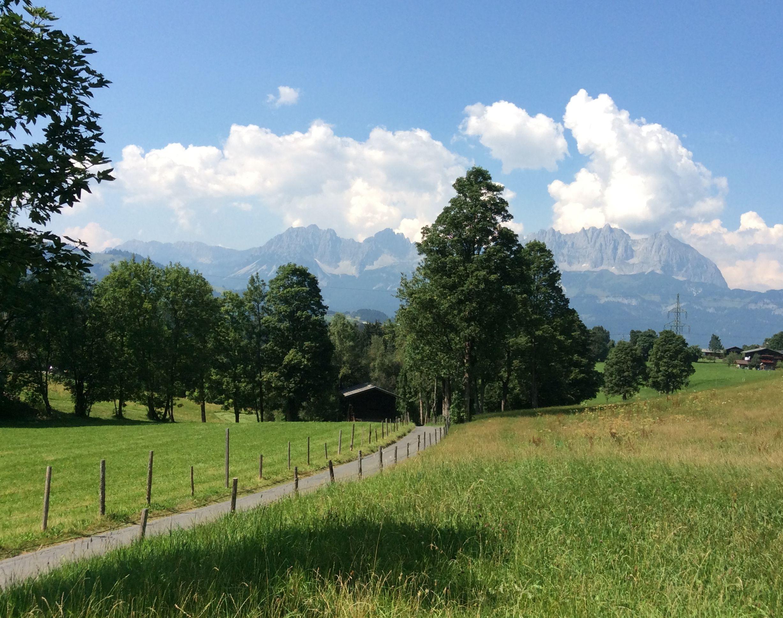 Blick vom Bauerhof in Kitzbühel auf den Wilden Kaiser