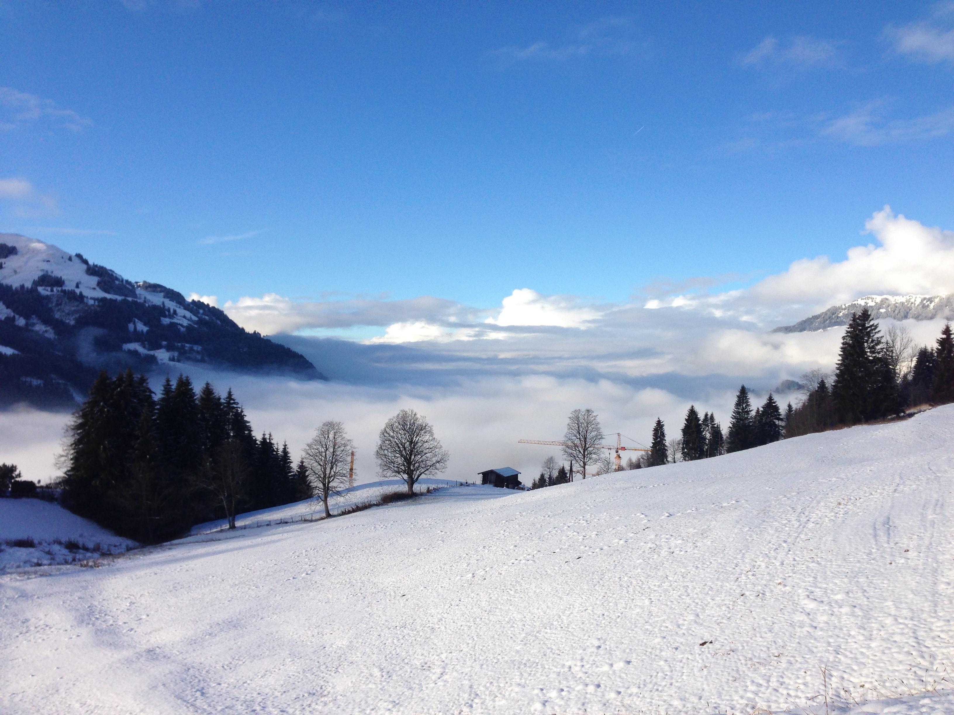 noch liegt der Wilde Kaiser im Nebel bei Blick von dem Anwesen in der Kochau/Aurach
