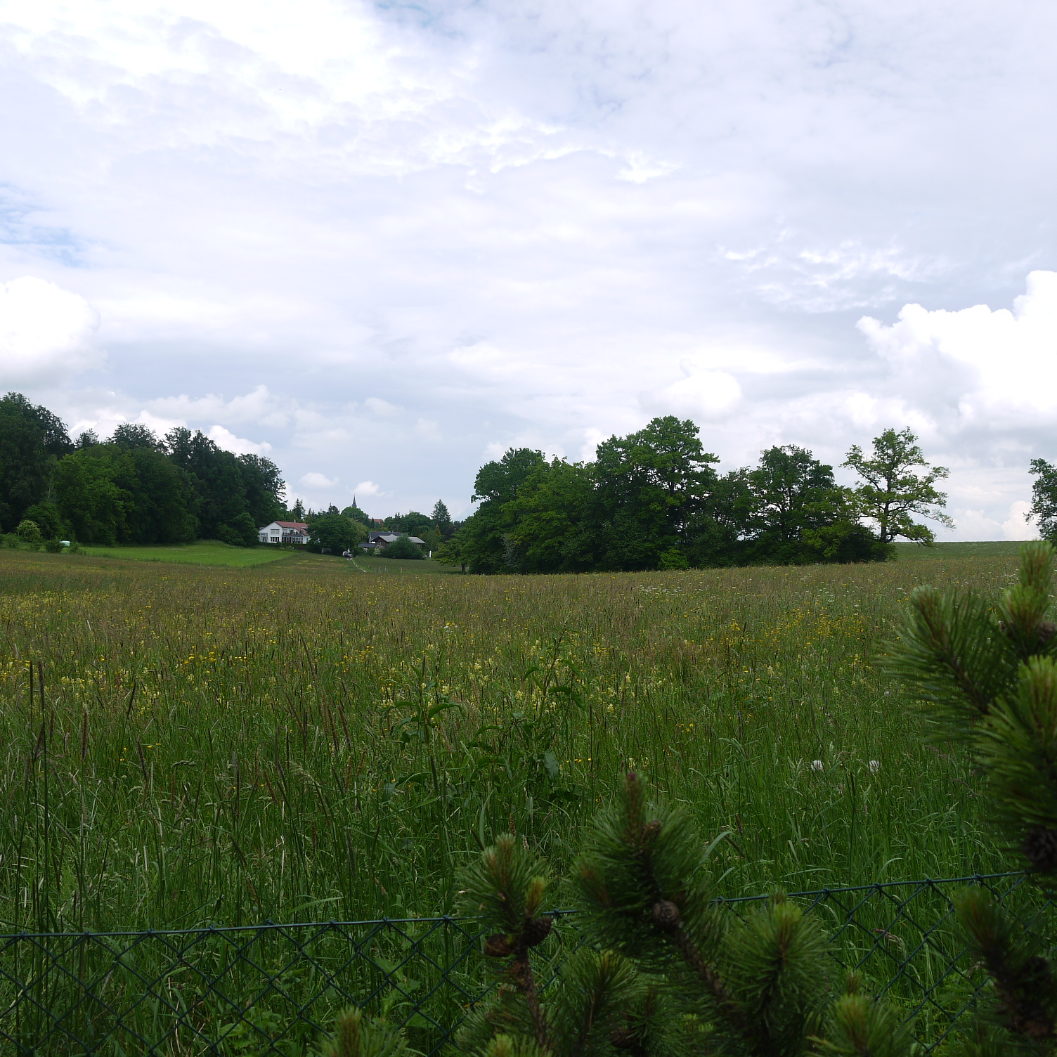Blick vom Landhaus in Berg über das Naturschutzgebiet