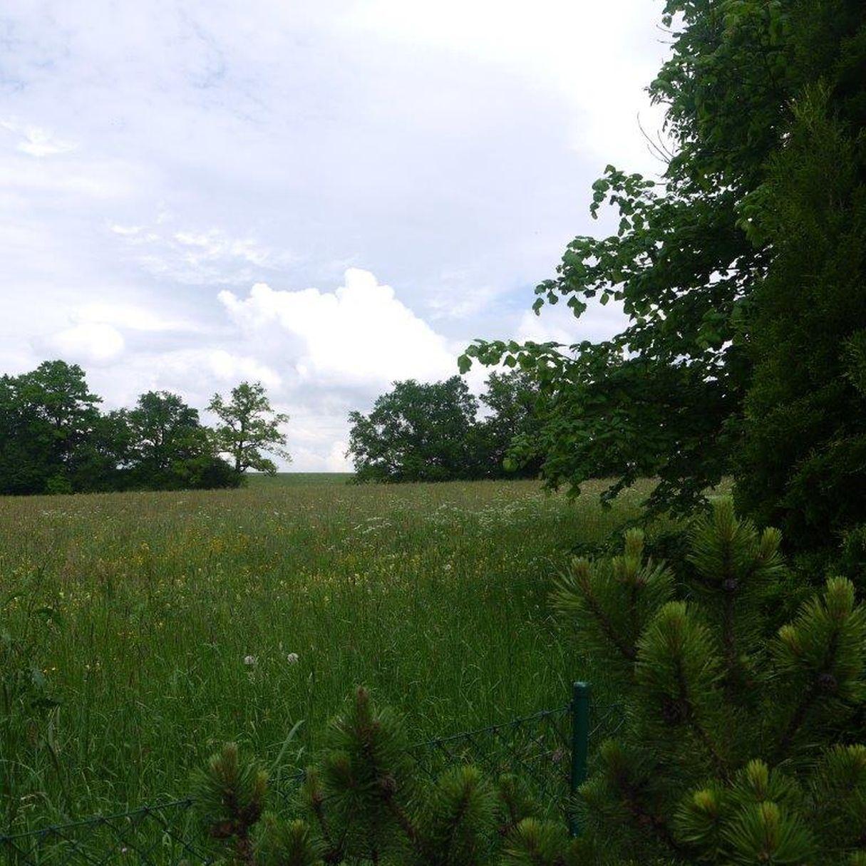 Naturschutzgebiet angrenzend an das Landhaus in Berg im toskanischen Stil