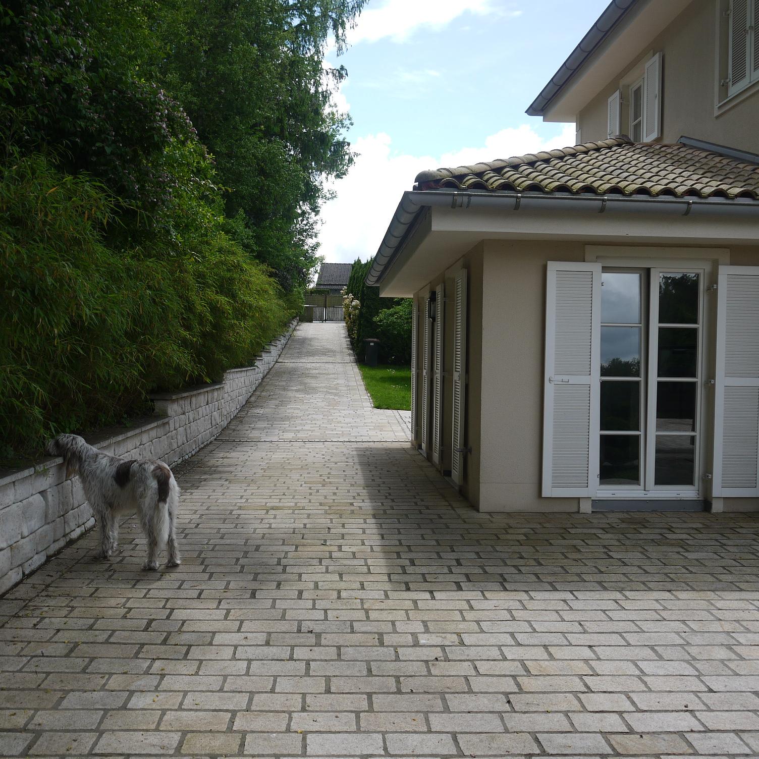Landhaus in Berg, Blick auf die Zufahrt